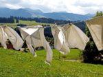 pranie-po-wakacjach